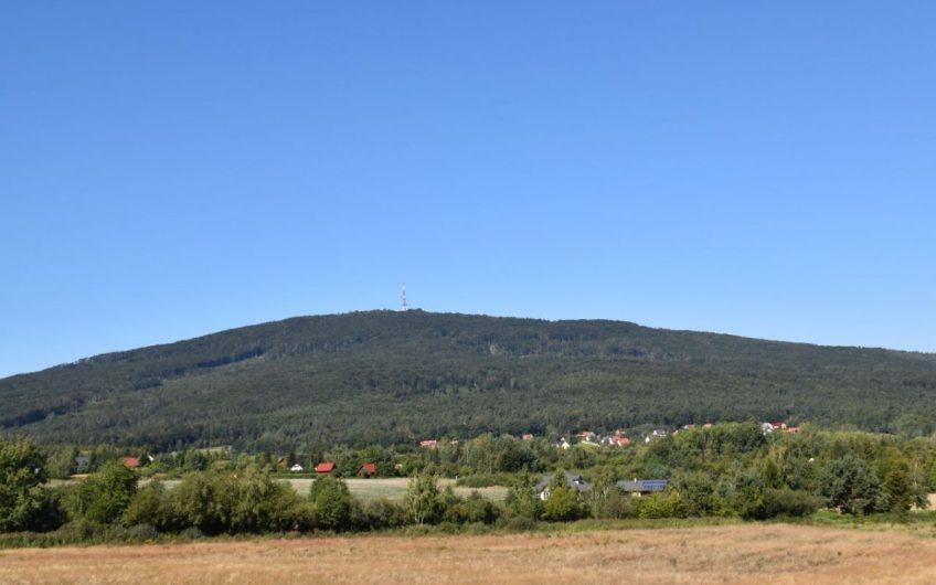 Zamieszkaj w Sulistrowicach w bezpośrednim otoczeniu lasu !