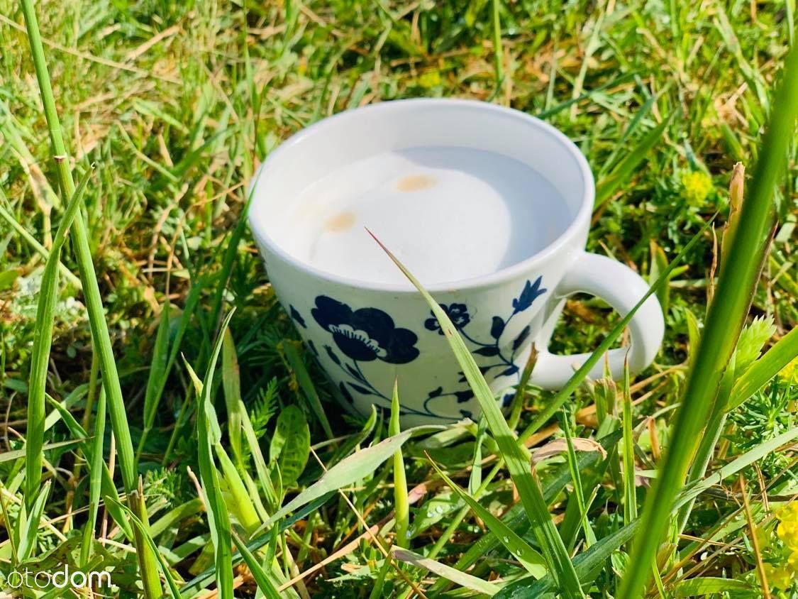Ksieginice Małe- kawa na własnym tarasie