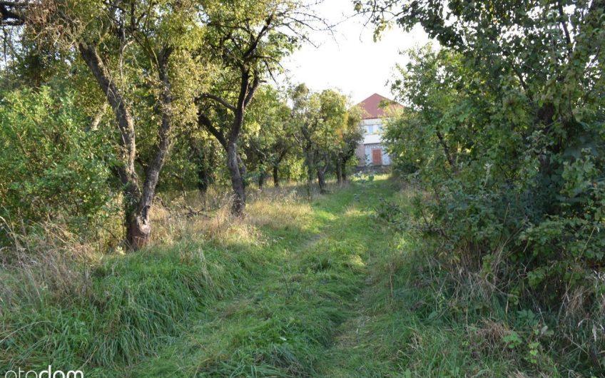 DOM w sadzie jabłkowym – Sulistrowice