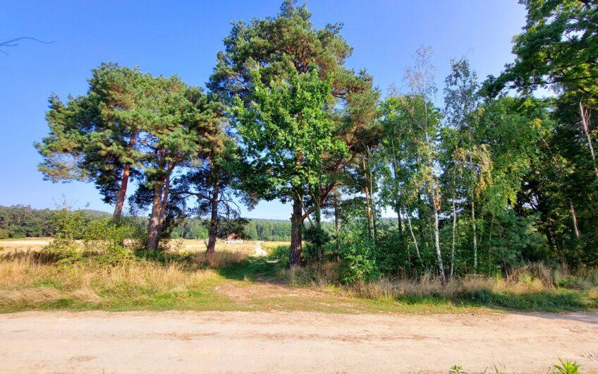 Działka budowlana z enklawą leśną SŁUPICE